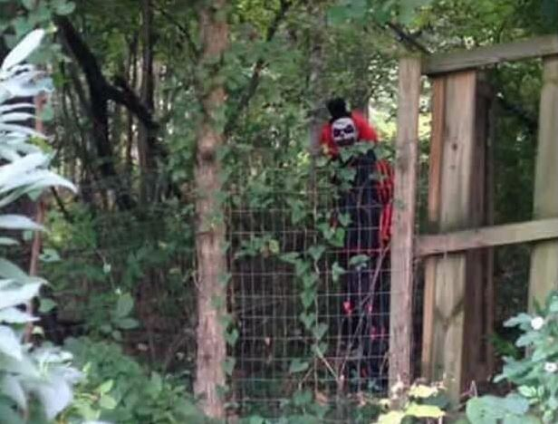 CreepyClownMelissaDooleysmall Creepy Clown Sightings Escalate, Locals Scared To Leave Their Houses
