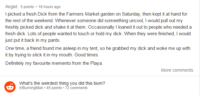 reddit4 People Did Some Weird Sh*t At Burning Man Festival This Year