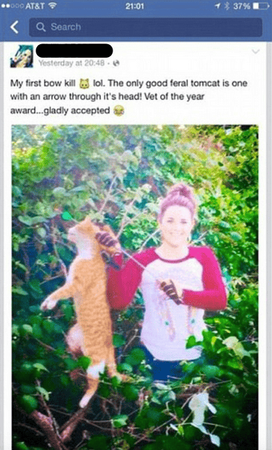 30583UNILAD imageoptim Screen Shot 2016 10 19 at 18.17.41 Vet Of The Year Posts Sickening Photo After Killing Neighbours Cat With Arrow
