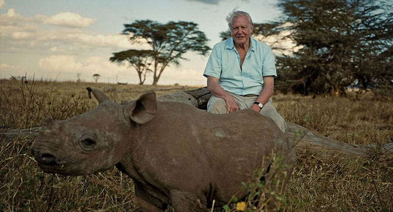 44243UNILAD imageoptim planetearth fb David Attenborough Is Back With Planet Earth 2 And The Trailer Looks Amazing