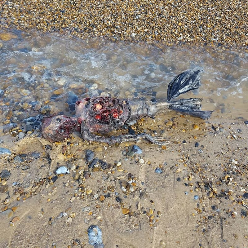 44517UNILAD imageoptim 14449917 307611186265946 6487568235606075499 n Dead mermaid Found Rotting On British Beach