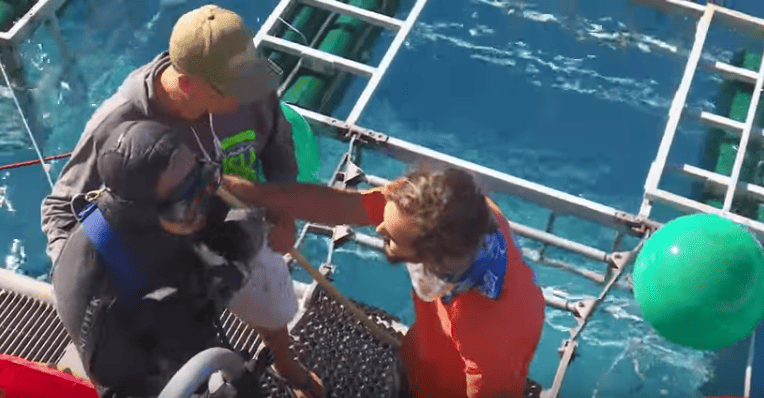 60511UNILAD imageoptim Shark4 Shocking Moment Great White Shark Bursts Into Divers Cage