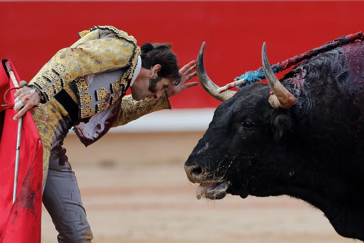bullfighting and the ban of the sport in catalonia The independence-minded region of catalonia became the first defenders of the sport see catalonia grapples with proposal to ban bullfighting.