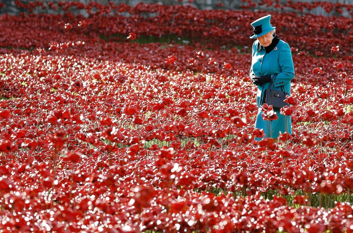 59933UNILAD imageoptim 51231UNILAD imageoptim PA 21359457 1 This Is Why We Celebrate Remembrance Sunday