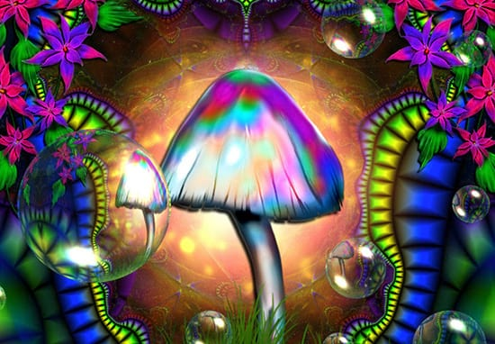 Here's What Magic Mushrooms Really Do To Your Brain And Body